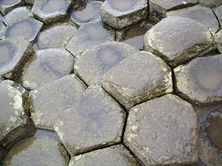 la calzada del gigante belfast - The Giant's Causeway