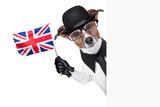 british dog  banner