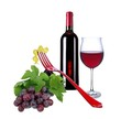 Rotweinflasche mit Rotweinglas