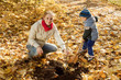 woman with  son planting  tree in autumn