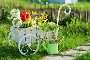 Decorative wheelbarrow and watering can with bright flowers