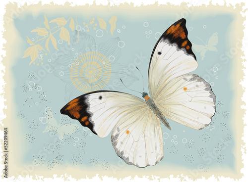 motyl-na-niebieskim-tle-w-stylu-retro
