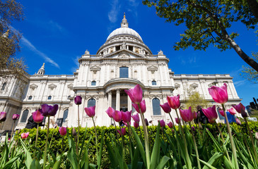 St Paul's in the spring