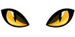 cat eyes vector illustration
