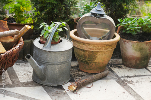 Watering can and pot with herbs in garden.