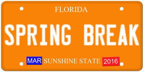 Spring Break Florida License Plate