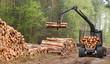 Leinwanddruck Bild - The harvester working in a forest.