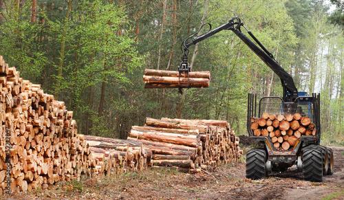 Leinwanddruck Bild The harvester working in a forest.