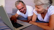 Elderly couple using laptop together