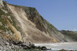 Major coastal landslide and rockfall , Dorset,UK
