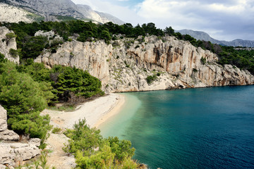 Amazing Adriatic Sea bay with pines in Croatia