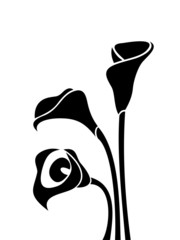 Black silhouettes of calla lilies. Vector illustration.