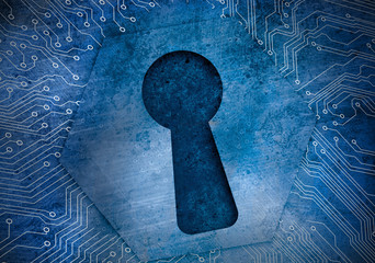 Keyhole on circuit board protecting data
