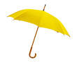 Yellow umbrella on white background
