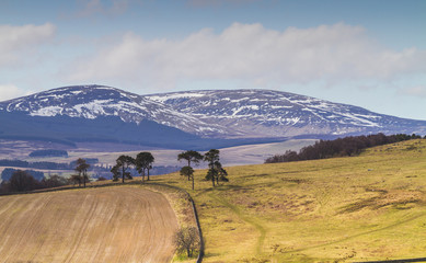 Cheviot Hills, Northumbria, UK