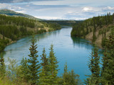 Yukon River north of Whitehorse Yukon T Canada
