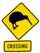 NZ Attention Kiwi Crossing Road Sign on White
