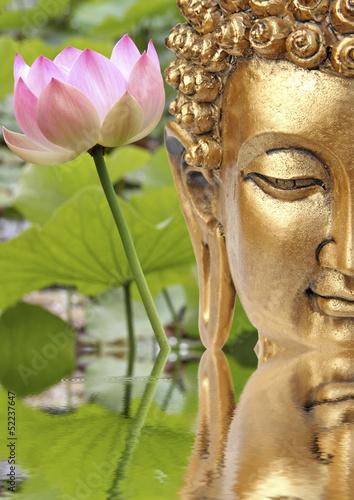 Fototapeten,buddhas,yin,yang,lotus