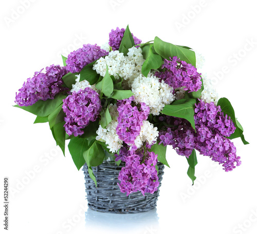 Beautiful lilac flowers in  wicker vase, isolated on white