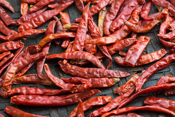 Sun-dried chili pepper in threshing basket