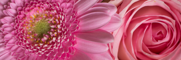 Pink flowers banner