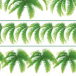 Seamless patterns, palm leaves