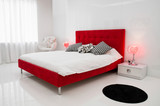 The White Room with a Red Bed
