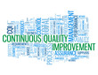 """CONTINUOUS QUALITY IMPROVEMENT"" Tag Cloud (process improvement)"