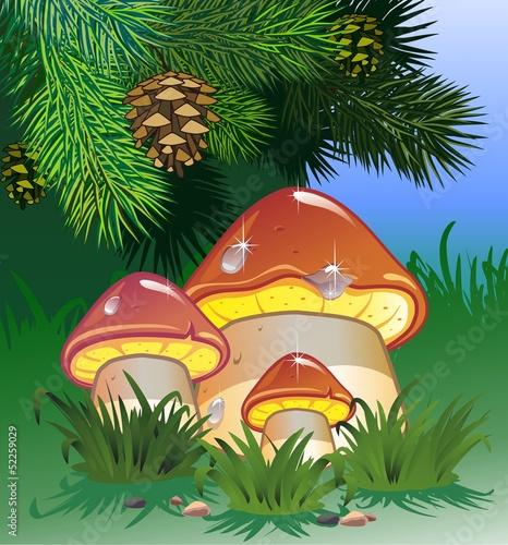 Staande foto Magische wereld Mushroom