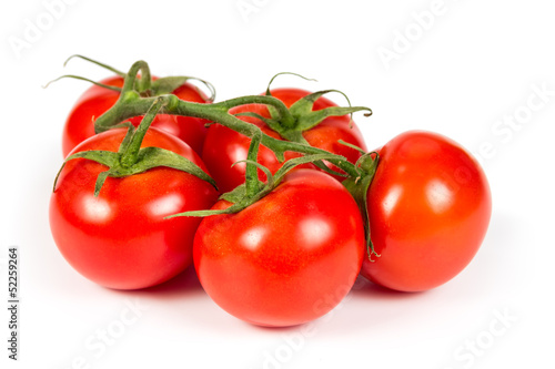 Branch ripe tomatoes