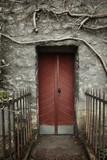 Old door - 52261291