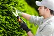 Gardener at work