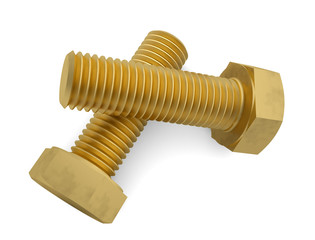 Two brass bolt