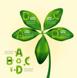 infographic water drop on leaf nature concept / graphic or websi