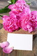 Three pink peony and card.