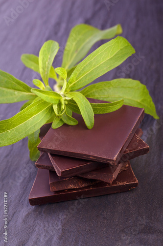 stevia as ingredient for chocolate bar