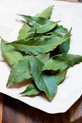 Bay leaves on light  background