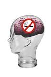 No Smoking Brain.