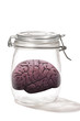 Brain in a Jar.