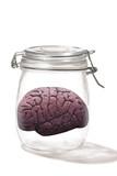 Brain in a Jar.