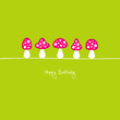 "Fly Agarics ""Happy Birthday"" Pink/Green"