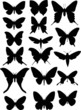 set of seventeen butterfly wings shapes
