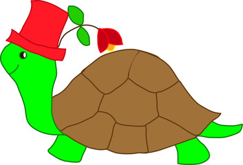 tartaruga con cappello