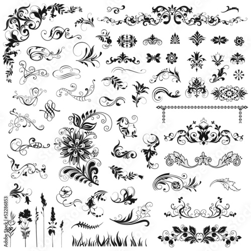Set of decorative  floral elements.