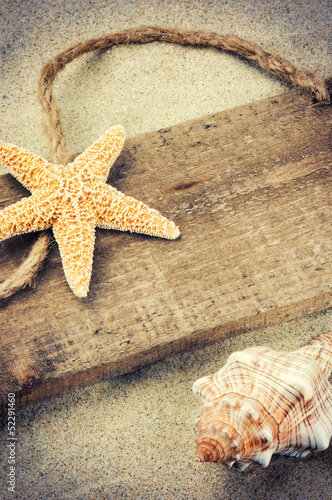 Old wooden board with seashells