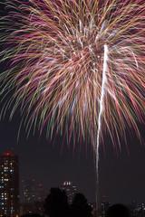 日本の夏の花火