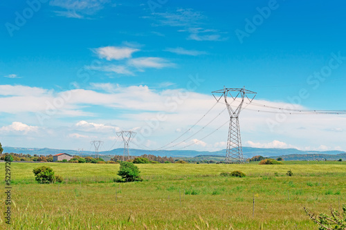 pylons in the grass