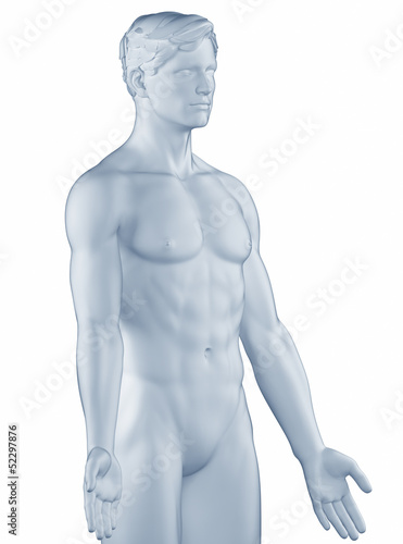 Man in anatomical position isolated