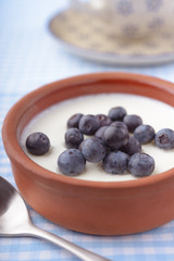 Yogurt with blueberry