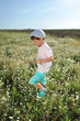 boy in blue shorts and a cap walks on chamomile field
